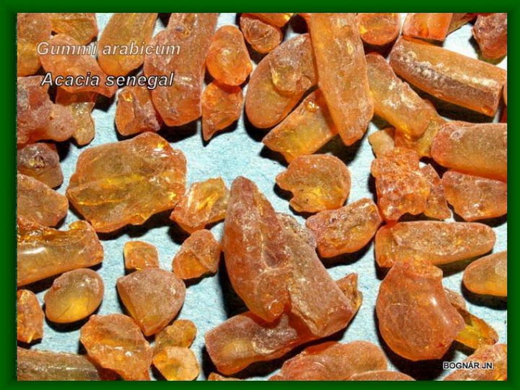 Akácia-drog Gummi arabicum
