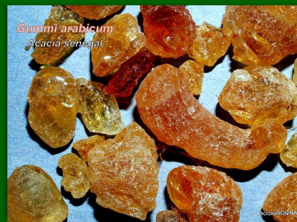 Akácia-drog-2 Gummi arabicum