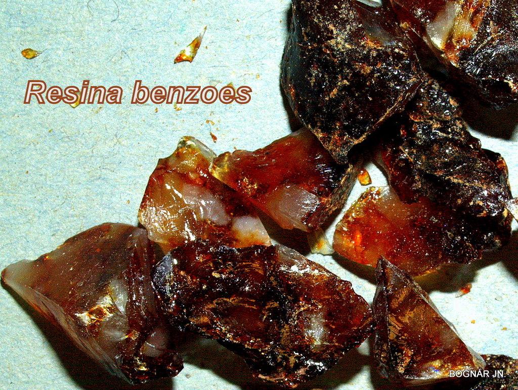 Benzoe gyanta-2