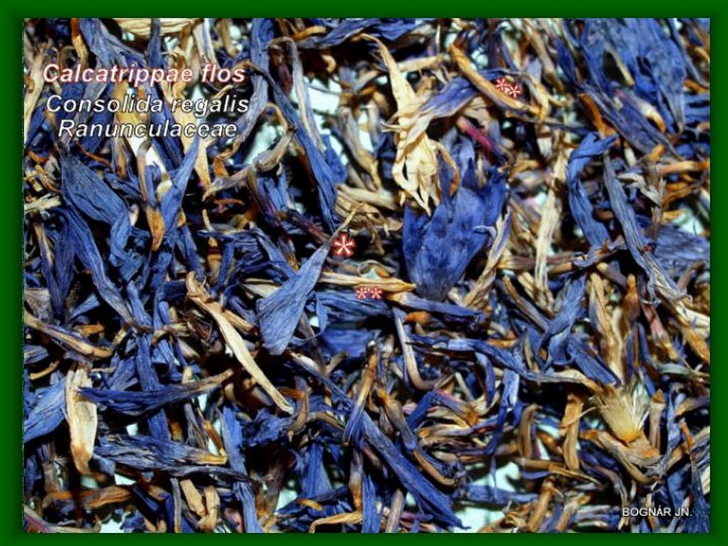 Mezei szarkaláb-virágdrog