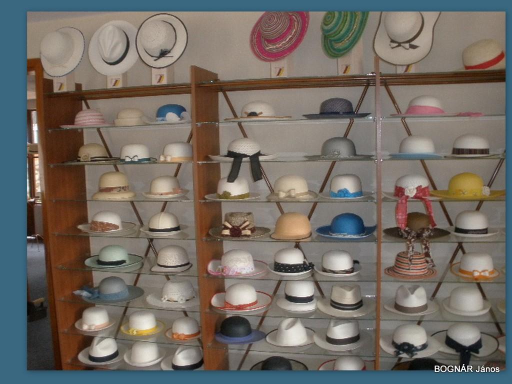 Panama kalap-1