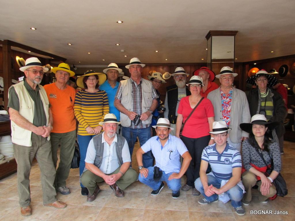 Panama kalap-21