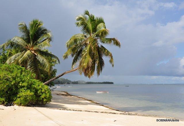 Seychelles Mahe like in the prospects